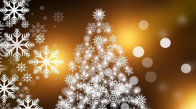 vánoční pohlednice.jpg